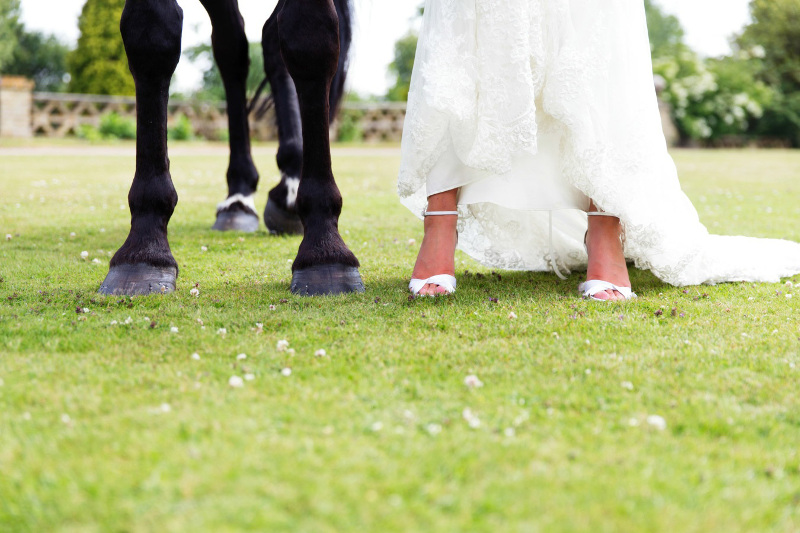 bride-and-horse-4008