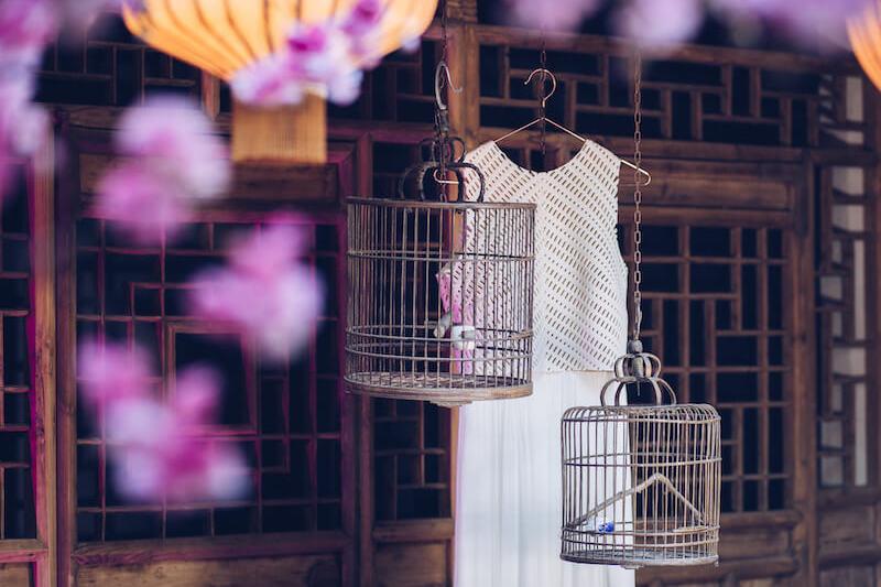 Brautkleid hinter Kirschblüten | Jennifer Spurk Fotografie