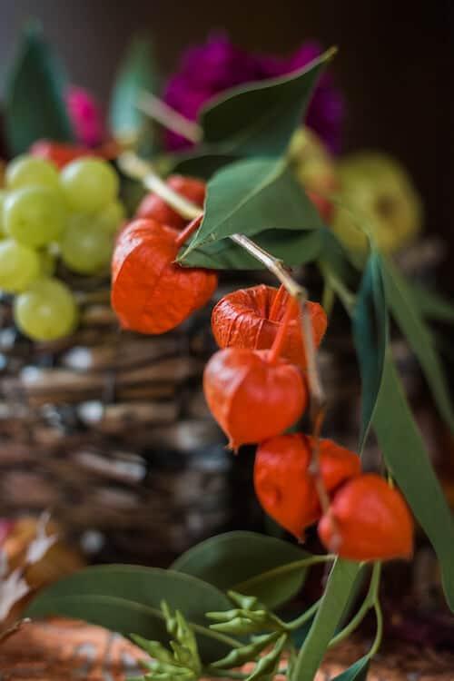 Nahaufnahme Herbstschmuck | Mannikus Made – Annika Meissner