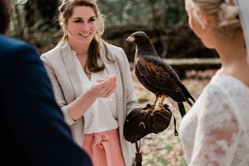 Vogel bringt Ringe | bildsprache Sina Frantzen
